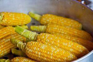 Flere maiskolber