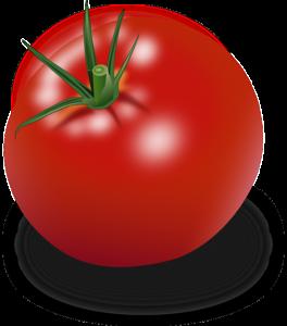 Illustrasjon av tomat